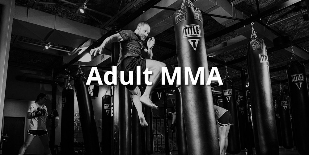 adult mma classes
